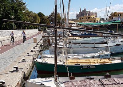 Spanish Courses in Mallorca
